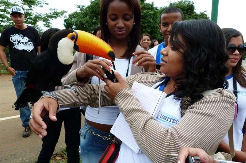 Curso Técnico em Meio Ambiente Visita Jardim Zoológico de Brasília