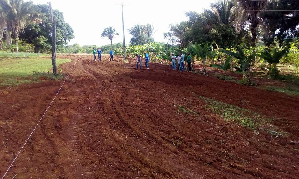 Preparando o solo para a implantação da área experimental do Curso técnico em Agropecuária.