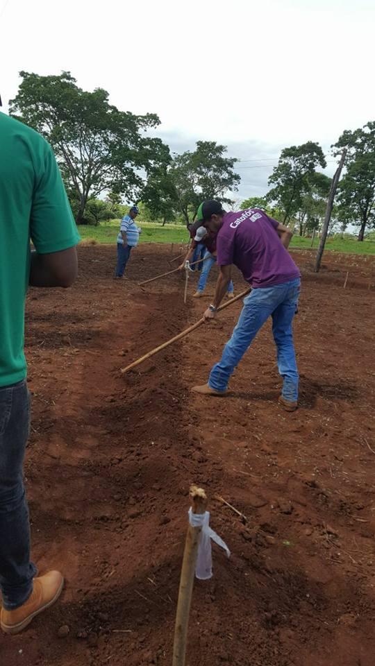 Implantação do experimento com os alunos do curso técnico em Agropecuária.